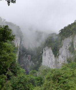 Gunung Mulu National Park Tours