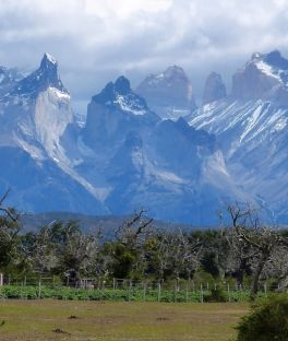 Torres del Paine W Trek Tours