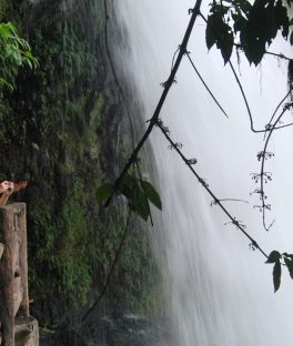 La Paz Waterfall Tours
