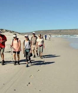 Elands Bay Tours