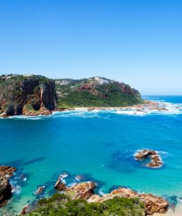 Port Elizabeth Tours