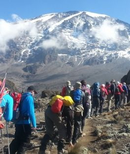 Mount Kilimanjaro National Park Tours