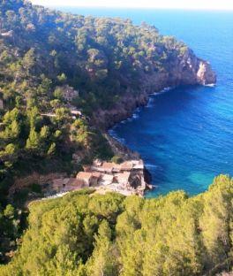 Palma Tours