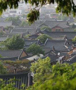 Jeonju Hanok Village Tours