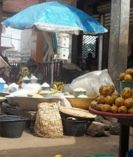 Cameroon Tours