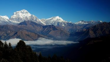 12-Day Mountains/Jungles/Cultures Tour In Nepal