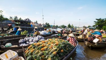 2-Day Mekong Delta & Cai Rang Floating Market Tour