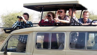 2 Days Budget Safari L Manyara And Ngorongoro