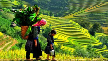 3-Day Sapa Trekking Tour With Overnight Train