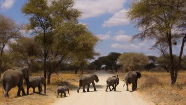 3 Day Weekend Safari from Arusha