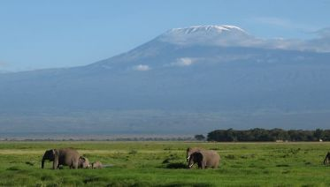 Amboseli National Park Tours