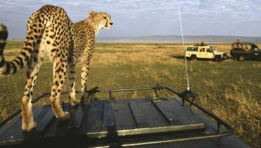 3 days Maasai Mara Safari