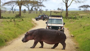 3 Days Safari - Manyara, Ngorongoro and Tarangire