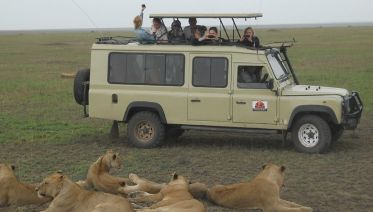 4 Day Big Five  Camping Safari
