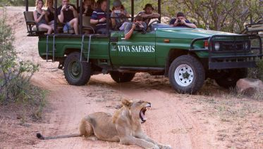 4-Day Classic Kruger Park Safari