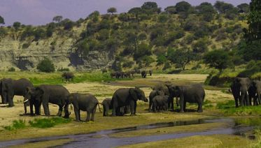 4 Day Selous Game Reserve