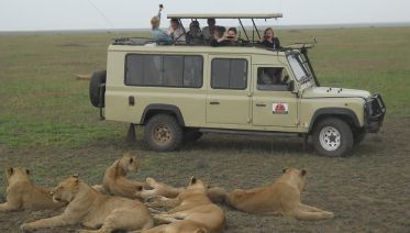 4 Days  Budget  Camping Safari-Tarangire/Serengeti/Crater