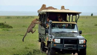 4-Days Masai Mara & Lake Nakuru Safari - All Inclusive