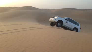 4x4 Desert Safari with BBQ Dinner, Belly Dance & Tannura