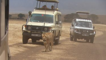 5 Day Camping Safari in Tanzania