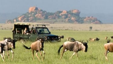 5-day Maasai Mara, Lake Nakuru & Hells Gate Group Safari