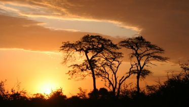 5 Days Camping Safari In Tanzania