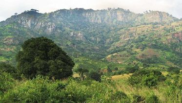 5 Days Mount Usambara Trekking