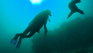 6-day Galapagos Padi Diving Course