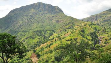 6 Day Usambara Mountains Trek