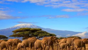 6 Days Machame Route Mount Kilimanjaro Trekking