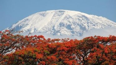7 Day Kilimanjaro Climb - Lemosho Route