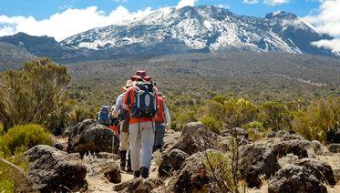 7 Day Mount Kilimanjaro Trekking - Lemosho Route