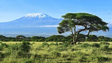 8-Day Mt Kilimanjaro Summit Climb (Machame Route)