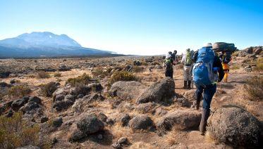 8 Days- Kilimanjaro Climb Machame Route