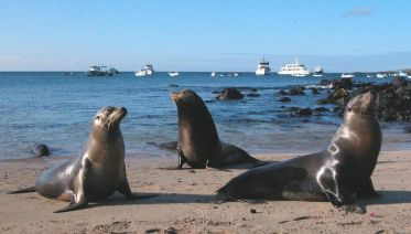 9 Day Galapagos Islands Classic - Group Tour