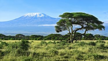 9-Day Mt Kilimanjaro Climb (Lemosho Route)