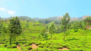 A Heaven Called Kerala