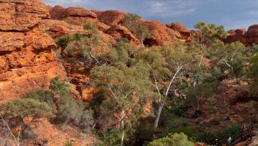 Adelaide to Darwin Overland