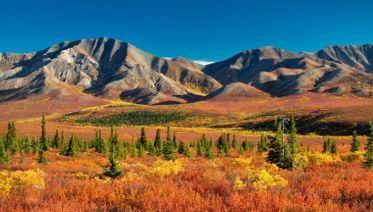 Alaska, the Rockies & Mexico