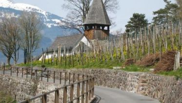 Alpine Rhine Cycle