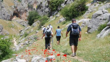 Alpujarra Day Excursion from Granada