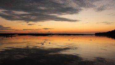 Amazon Rainforest and Caribbean Coast