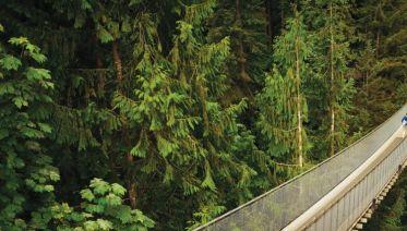 America's Captivating Pacific Northwest