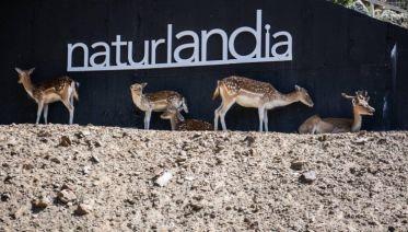 Andorra Naturlandia Animal Park, City Break