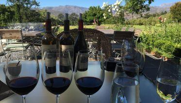Antonij Rupert Premium Wine Tasting