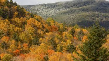 Appalachian Trail In-depth