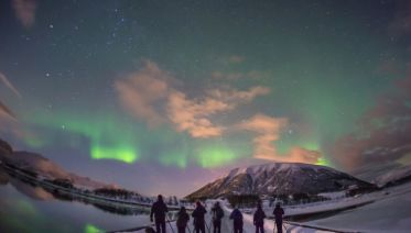 Arctic Lights & Whales Photographic Special
