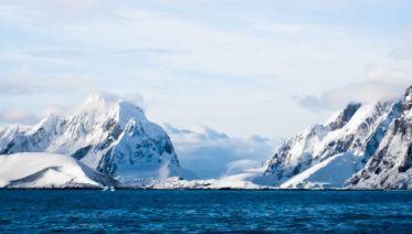 Arctic Unveiled