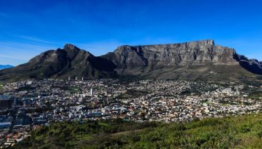 Art And Wine In Cape Town, Private Tour