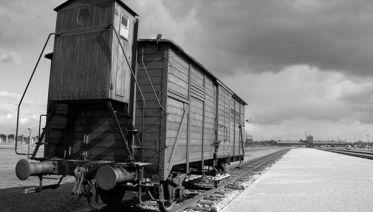 Auschwitz - Birkenau Tour